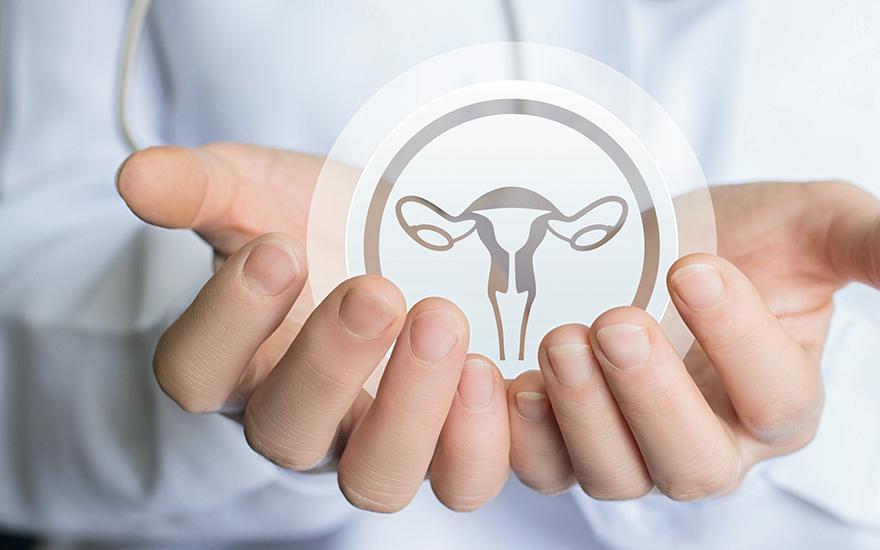 Układ rozrodczy kobiecy